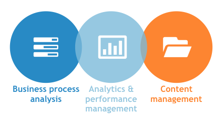 Business Process Management Software Report: Analysing User Problems