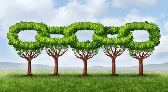 Achieve Supply Chain Improvement Using Sustainable Business Practices
